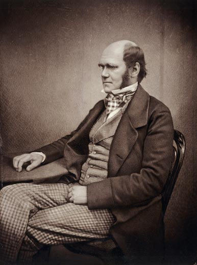 Charles Darwin - middle age portrait (photo).